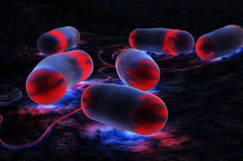 24 - Legionella Stop